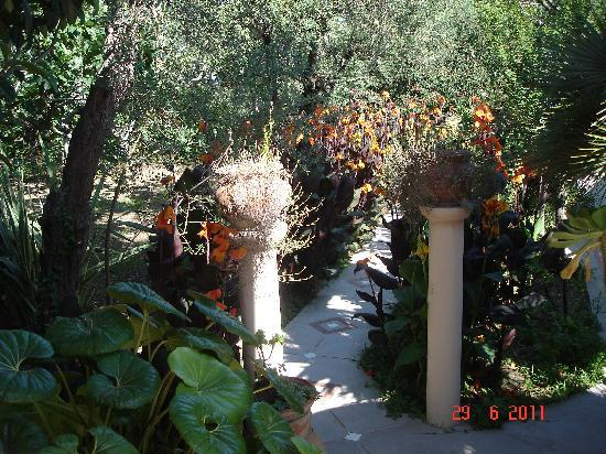Villa Eva : Walkway view2
