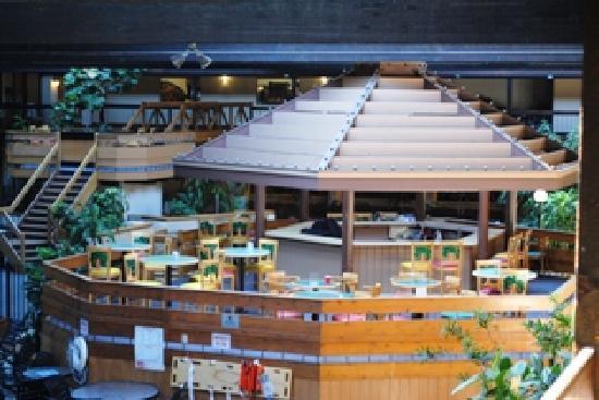 Millennium Buffalo Hotel Reviews