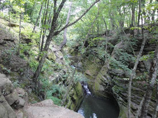 Pewit's Nest Gorge : views