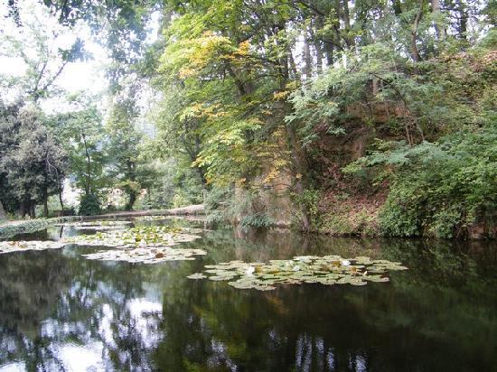 Busca, Italië: parco con ninfee
