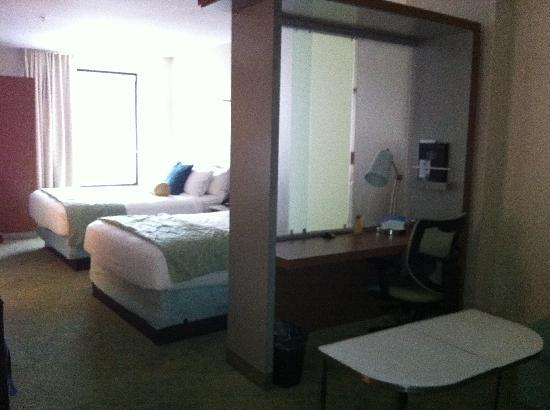 SpringHill Suites Louisville Downtown: Room 213 view