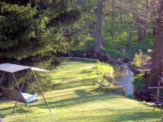 Hotel Vogtland: Blick in den Garten