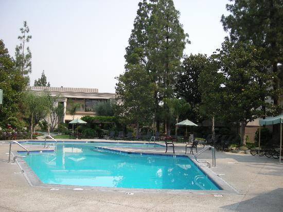 Oakwood Apartments - Woodland Hills: Piscina