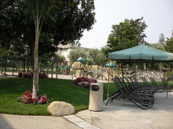 Oakwood Apartments - Woodland Hills: Jardin