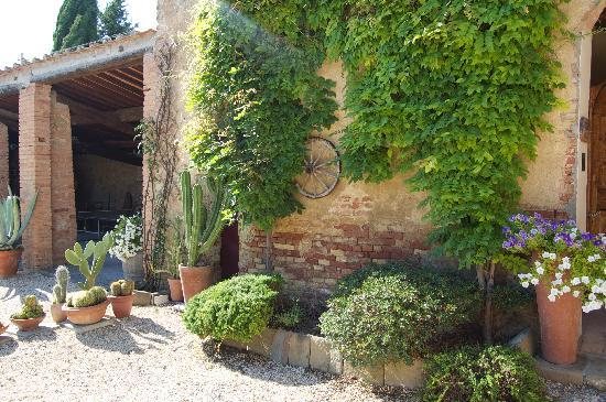 Agriturismo Marciano: Picture perfect