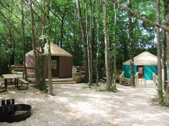 Catherine's Landing, an RVC Outdoor Destination: Yurt Village