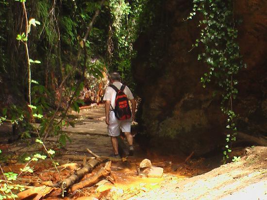 El CastaNar Nazari: Vistas de la Fuente Ágria