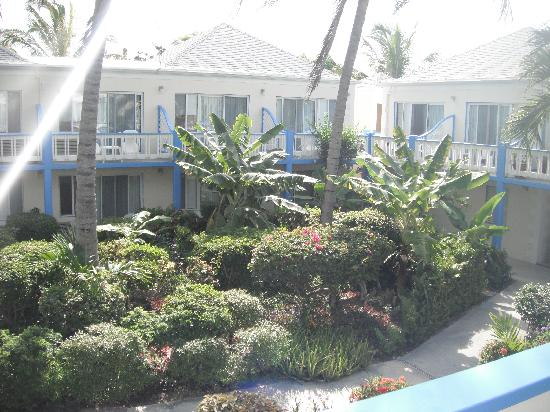 Sibonne Beach Hotel: The garden view from our room