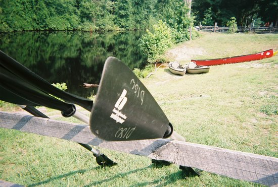 Dismal Swamp State Park: Canoe or kayak at the Lock