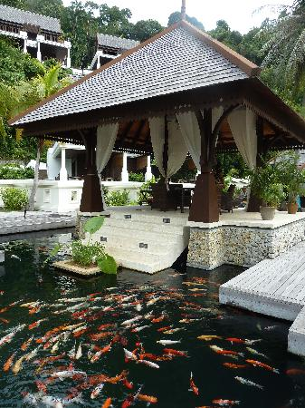 Pangkor Laut Resort: enjoy this view while enjoy the buffet breakfast.