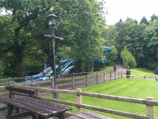 Oakwood Theme Park : poor condition of benchs and fences, rides covered in alge.