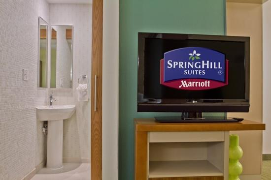 SpringHill Suites Columbia Downtown/The Vista: 37in Flat Screen in Room