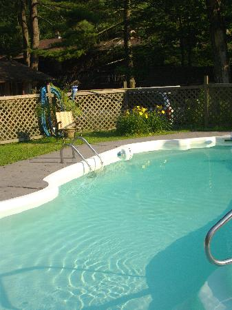 Martinville Streamside Cottages: Nice pool with BBQ , sitting area, chairs etc