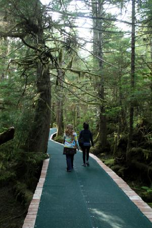 Silverking Lodge: Relax on our boardwalk trail into the rainforest!