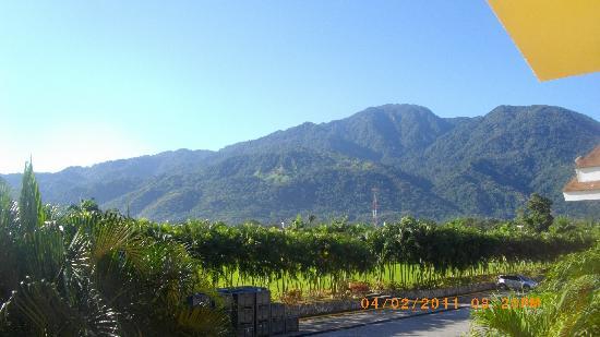 Palma Real Beach Resort & Villas: vue de notre balcon arriere