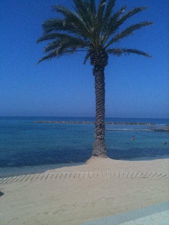 Constantinou Bros Pioneer Beach Hotel : Paradise