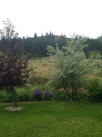 Methow Suites Bed and Breakfast: View of backyard & surrounding area
