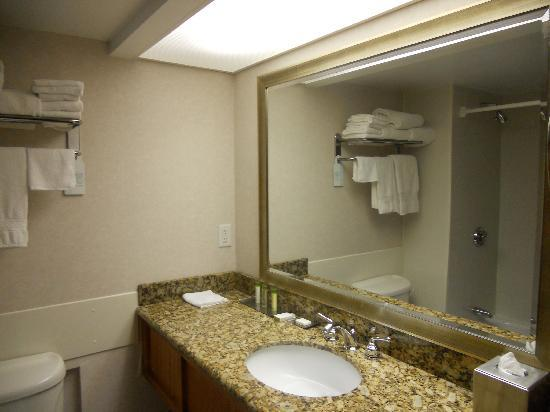 DoubleTree by Hilton Hotel Madison: Bathroom