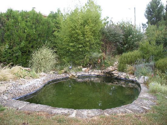 Les Passiflores: la piscina naturale