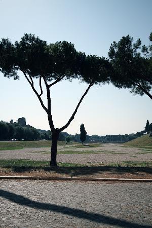 Rome Sharing Tour : Circo Massimo