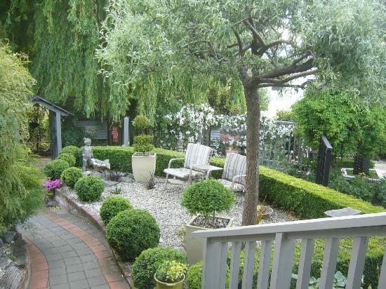 Collinson's Cottage : collinsons garden