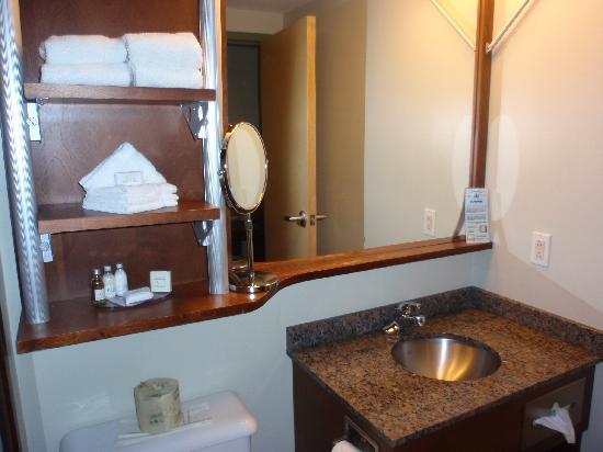 Hotel & Suites Le Dauphin Quebec : Bathroom