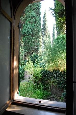 Casa Baldo B&B : View of the greenery outside our bedroom window