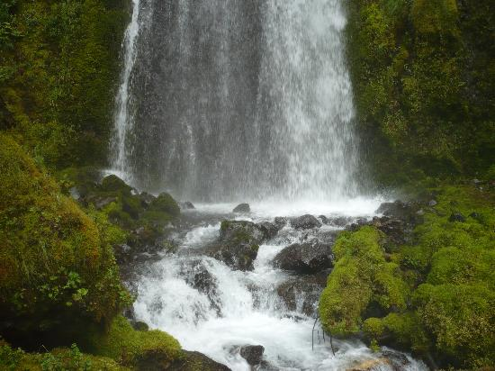 Skamania Lodge: Another short hike to the falls