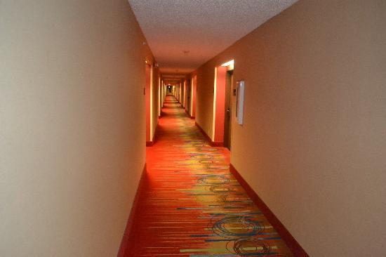 Hampton Inn Loveland Hallway