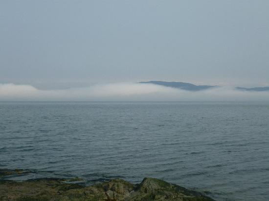Auberge du Lievre: matin brumeux sur le fleuve