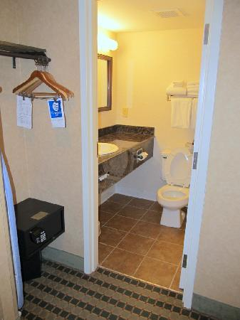 Comfort Inn Troutville: Bathroom
