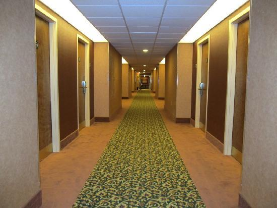Comfort Inn Troutville: Even the hallways are nice
