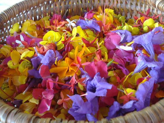 Culloden Bay, Tobago: Flowers from the Resort
