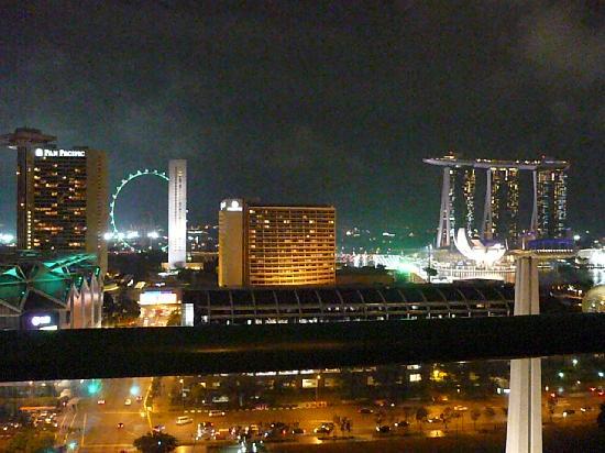 Fairmont Singapore: ホテルからの夜景