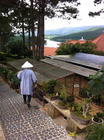 Thien Vuong Co Sat Pagoda : what a view
