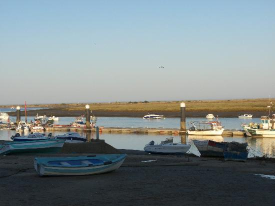 Casa do Polvo Tasquinha : View across Santa Luzia Harbour