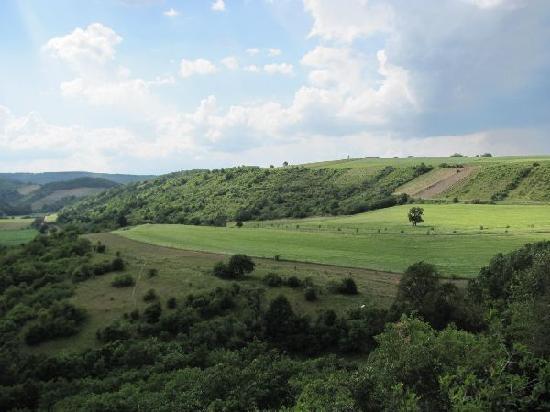 Burgruine Sponheim: panorama from the platform