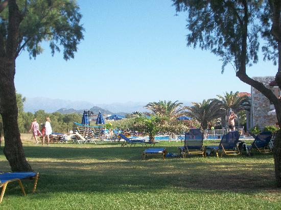 Lito Beach: Pool/garden area