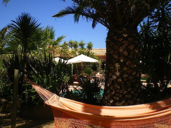 Salsalito: hammock in garden
