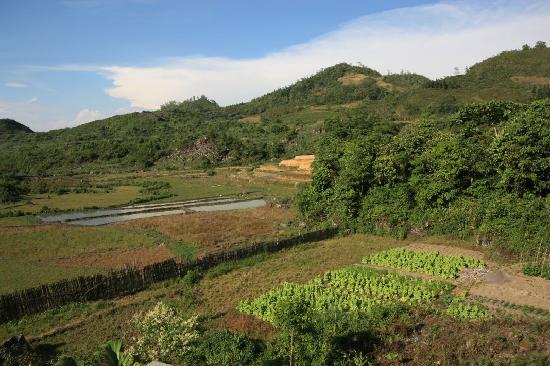 Cao Son Ecolodge: View from my window