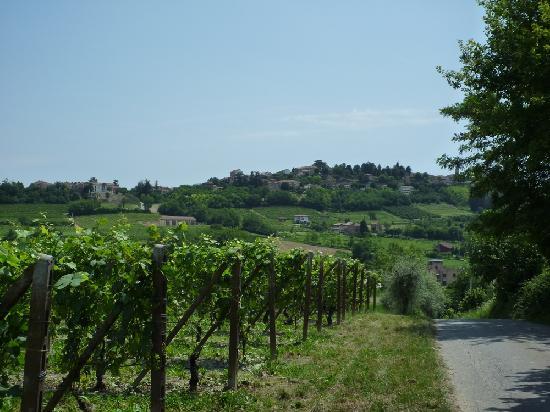 Casa di Maio: Walking to Algiano Terme