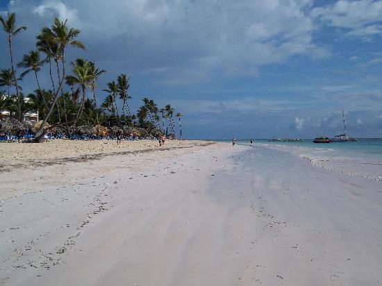 โรงแรมวิค อารีนา บลังกา: beach