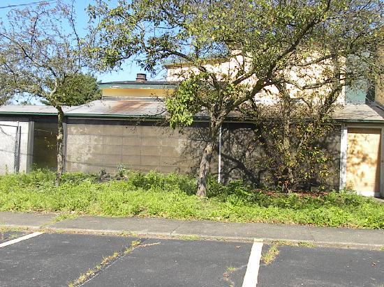 Pocono Inn At Water Gap: Landscape?