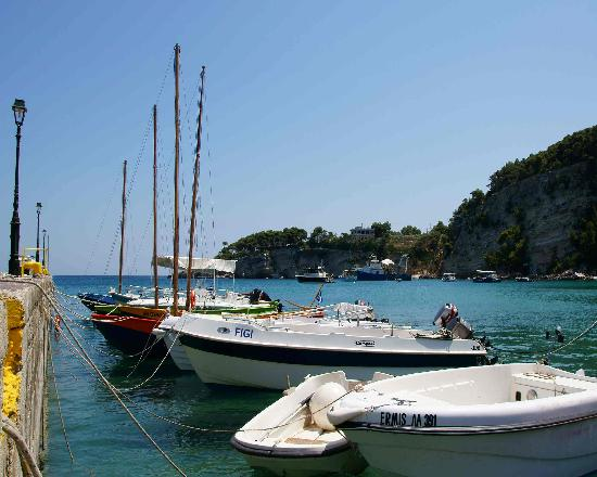 Alonissos - Picture of Alonnisos, Sporades - TripAdvisor