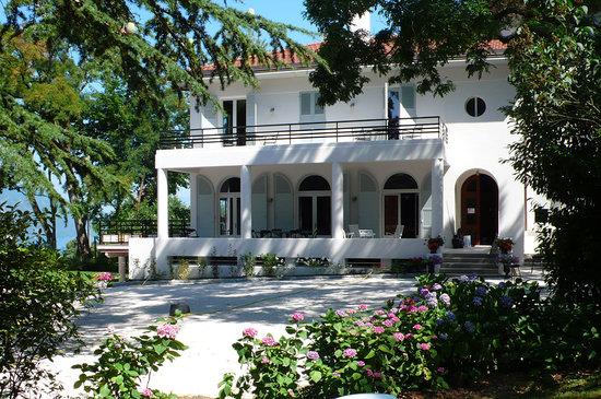 Le Sophora Chambres d'Hotes: La maison dans les arbres