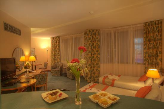 Al Diar Dana Hotel: Twin Bed Room