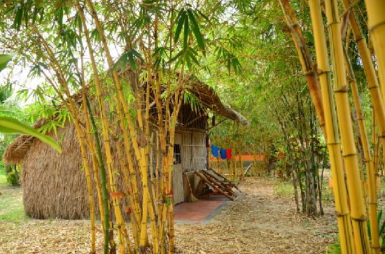 Jungle Beach VietNam: a hut