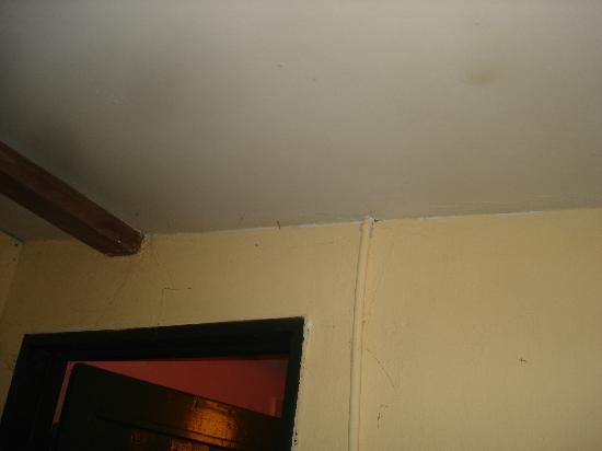 El Puesto Hostel: Entrada baño (telarañas)