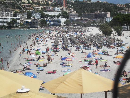 Plazamar Serenity Resort: beach