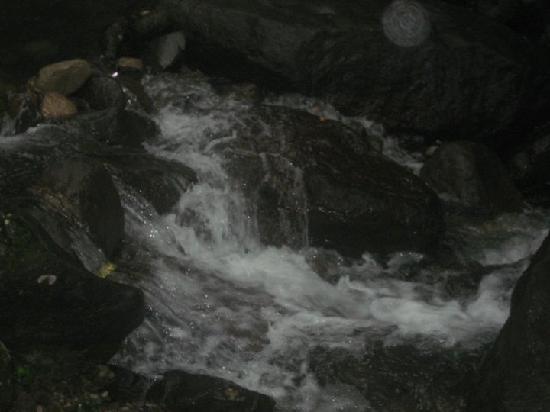 Hostal Cariguana: riachuelo camino a la piedra pintda